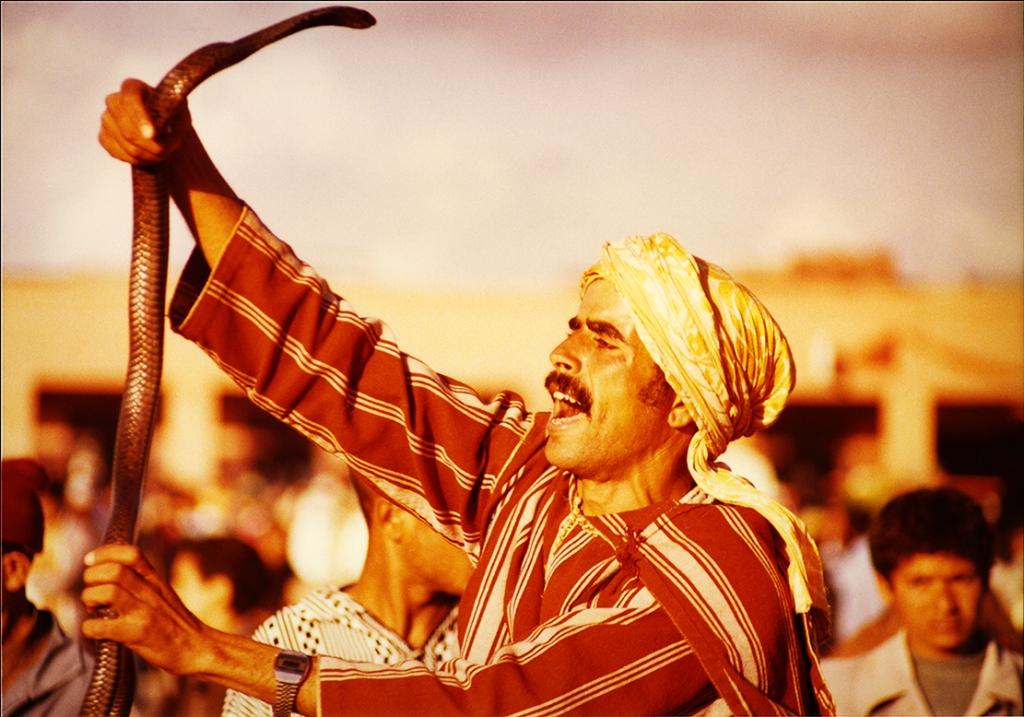 Snake charmer- Morocco2